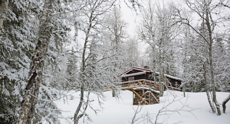 Hytte på Krokskogen