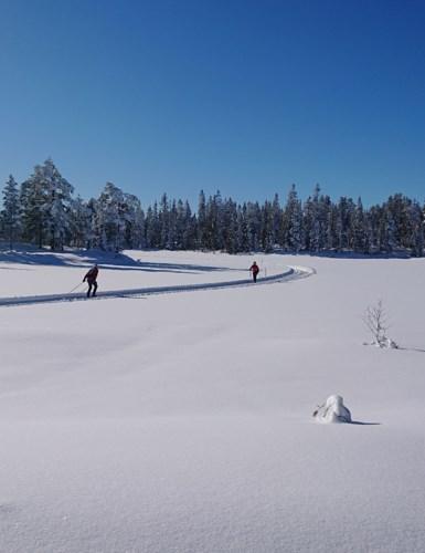 Skiløpere på Snellingsvannet 5. mars 2020.